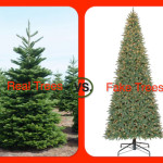 Real Christmas Tree vs. Fake Tree?